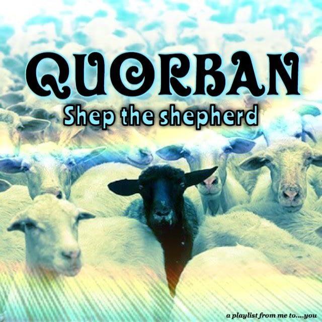 Shep the shepherd - Quorban